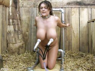 Симпатичная рабыня с огромными молочными дойками унижена в хлеву