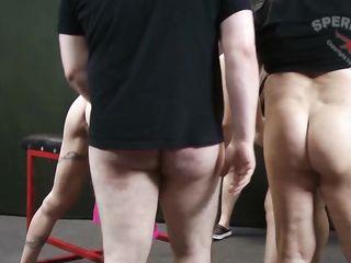 Зрелые сучки наполнены спермой